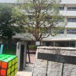 [出張パズル教室]六面体パズル教室 in 南六郷小学校
